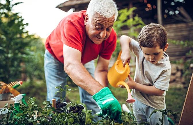 Grandpaw Gardening